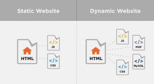 Website Statis dan Dinamis